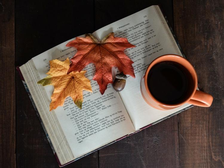 5 livres à lire en Novembre © Pixabay / CC0 dh_creative